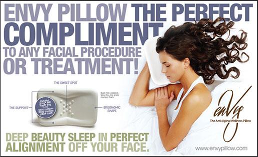 Envy Pillow 1